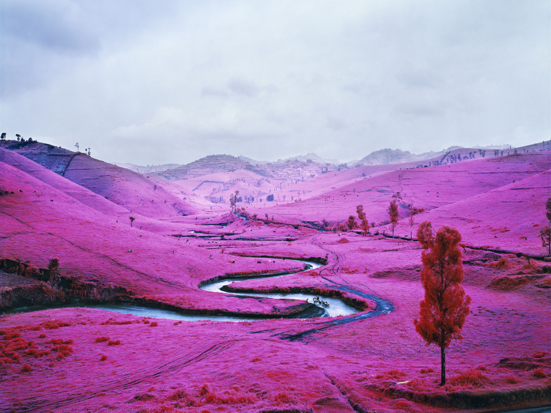 Richard-Mosse-Platon-2012.-Digital-c-print.-©-Richard-Mosse.-Courtesy-of-the-artist-and-Jack-Shainman-Gallery-New-York.